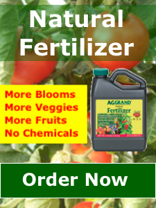 Best Liquid Fertilizer For Food Plots